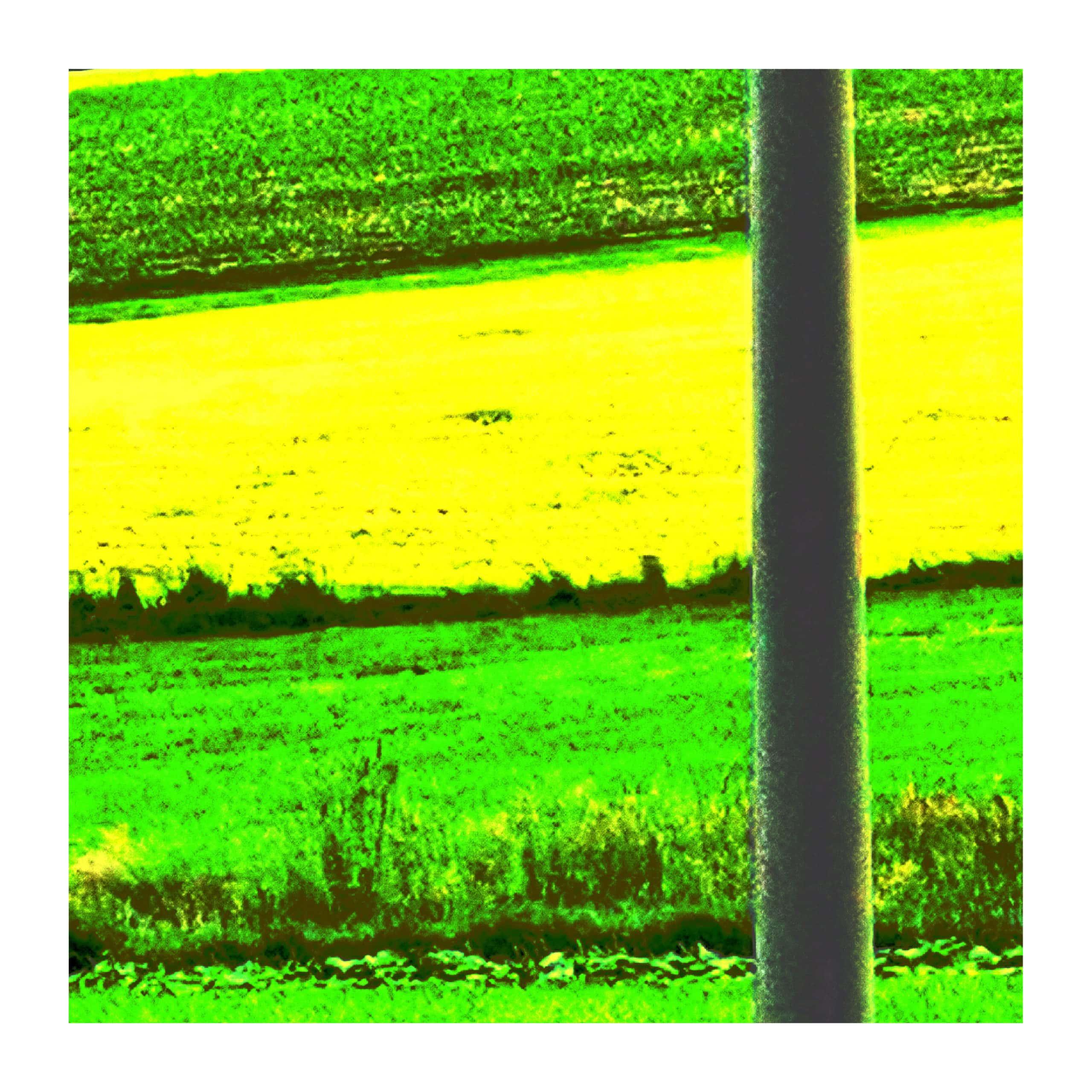 Quadratisches Format II- Leopoldi-Art