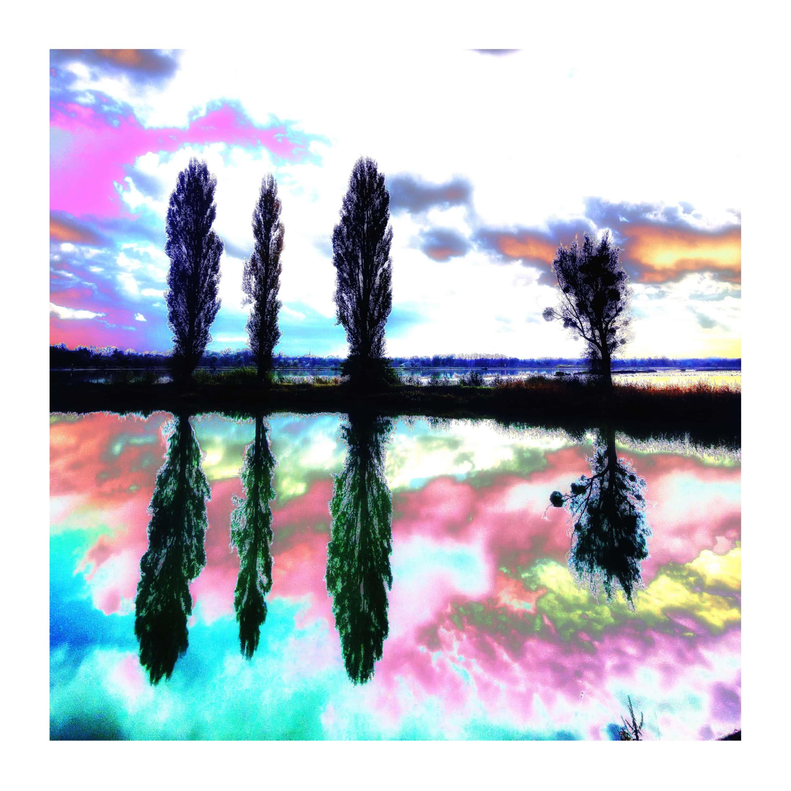 Quadratisches Format V- Leopoldi-Art